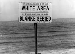 White area_SA